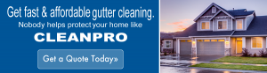 gutter cleaning quote