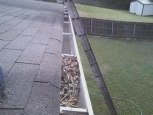 gutter cleaning servcies