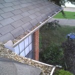 Gutter Cleaning Austin Clean Pro Gutter Cleaning