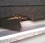 Gutter Cleaning St Louis Clean Pro Gutter Cleaning