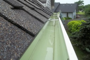 Gutter Cleaning St. Louis