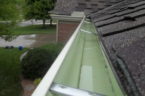 Gutter cleaning St. Louis Missouri