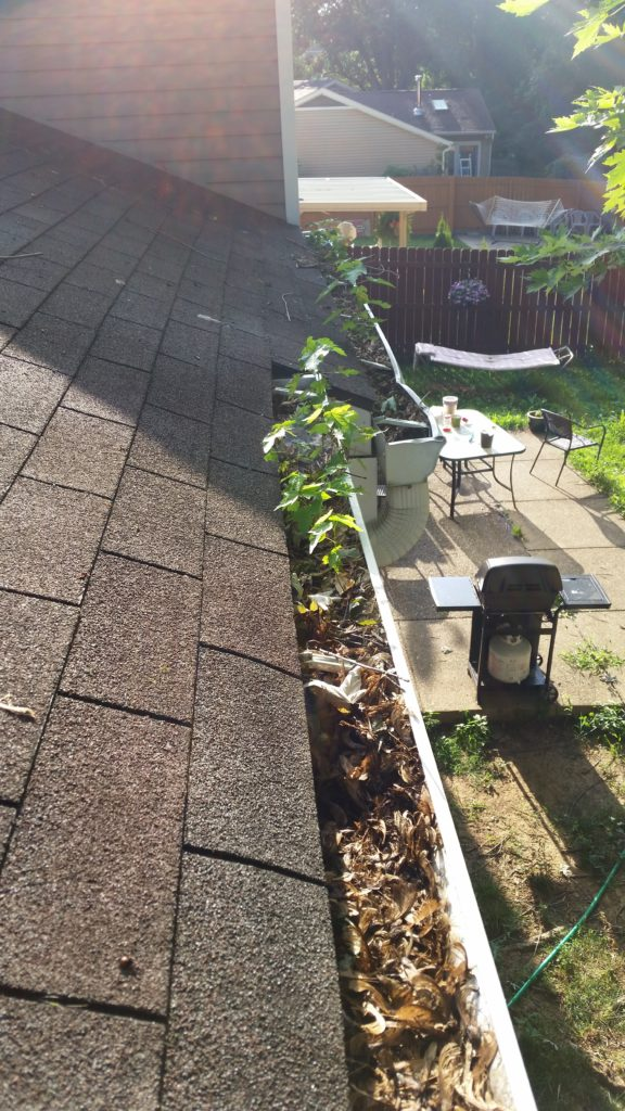 Gutter Cleaning Kansas City