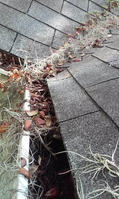 Recent Gutter Cleaning Orlando, Fl - October 6, 2016 ...