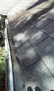 orlando-gutter-cleaning