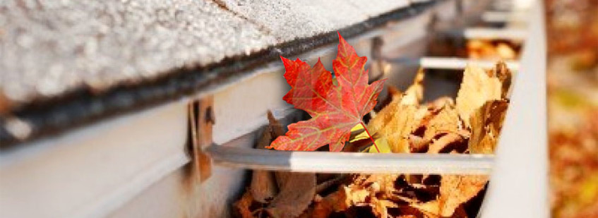 Gutter Cleaning Safely