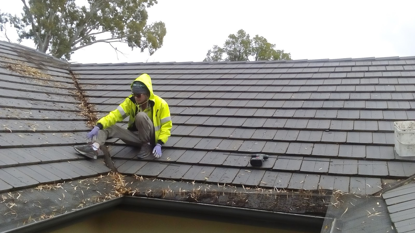 Clean Pro Gutter Cleaning - A Professional Gutter Cleaning Company