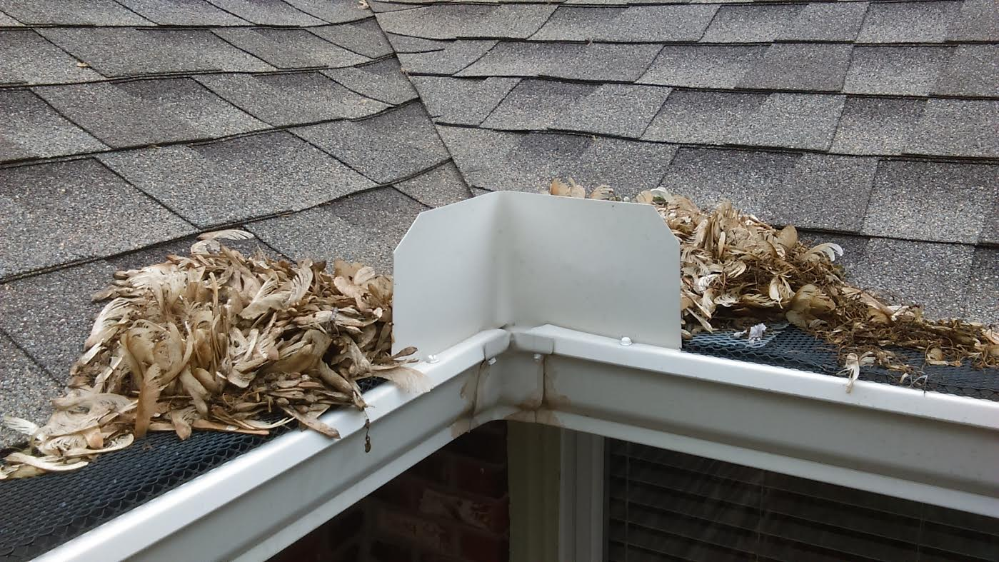 Gutter Guards Are Advertised As Being Able To Prevent Gutters From Clogging With Leaves And Debris Therefore Saving You What Could Be A Dangerous