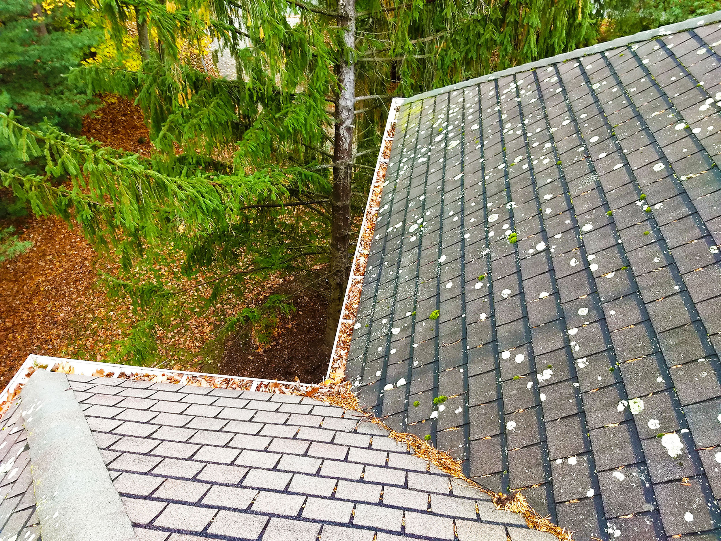 Gutter Cleaning Indianapolis In Recent Job 11 7 17