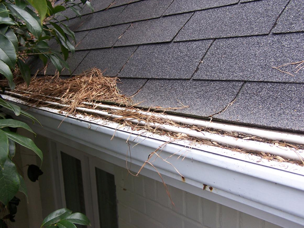 Gutter Guards Are They Worth The Investment In 2018