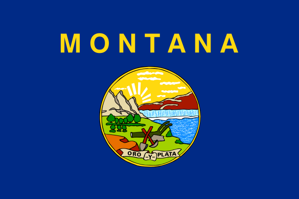 Gutter Cleaning Montana