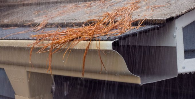 Best Gutter Guard For Pine Needles Clean Pro Gutter Cleaning