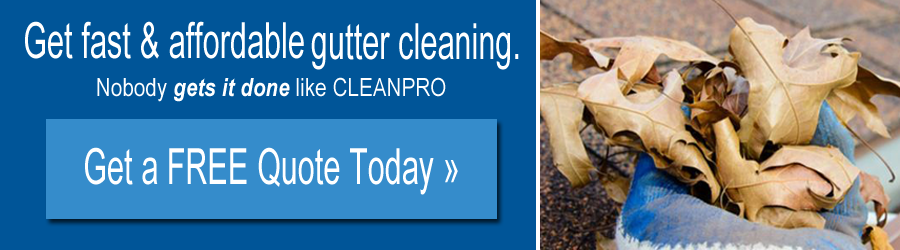 gutter cleaning indiana