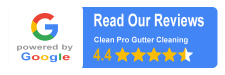 clean Pro gutter cleaning customer reviews
