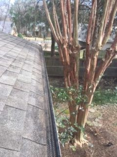 Gutter Cleaning Service Near Gainesville, Gutter Cleaner Near Gainesville