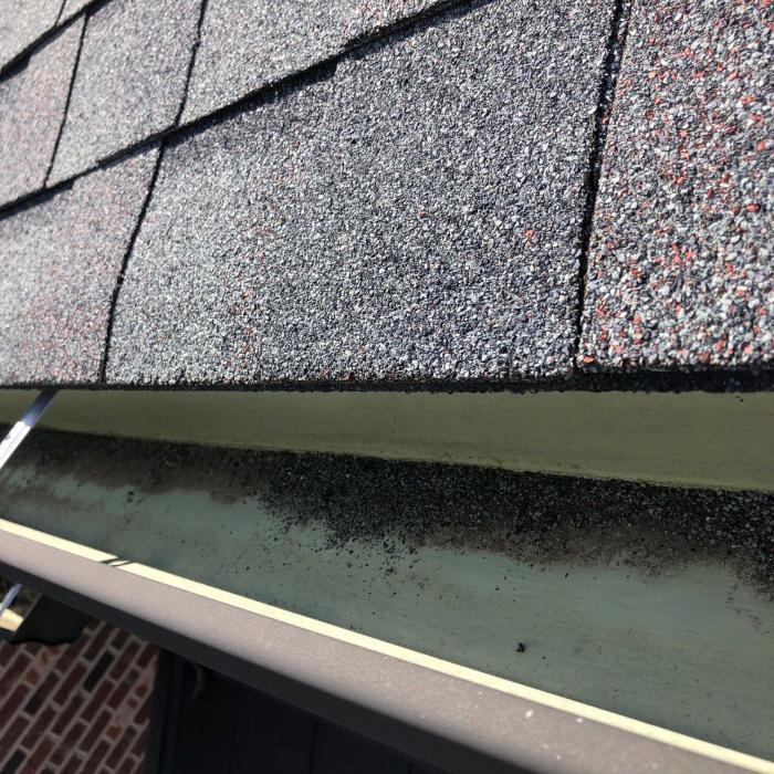 Gutter Cleaning Service Near Knoxville, Gutter Cleaner Near Knoxville,