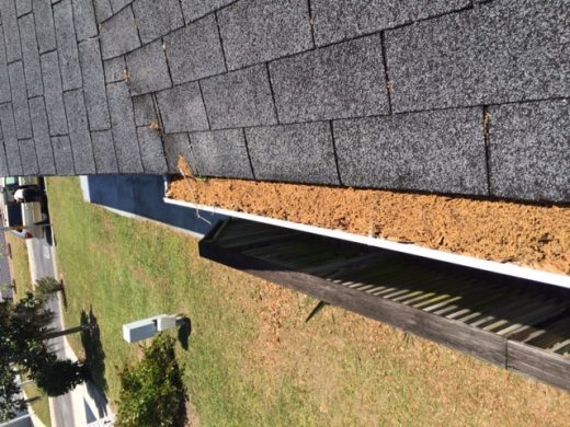 Gutter Cleaning Service Near Riverview, Gutter Cleaner Near Riverview