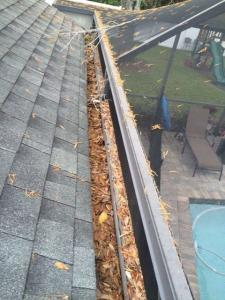Gutter Cleaning Service Near Tampa, Gutter Cleaner Near Tampa,