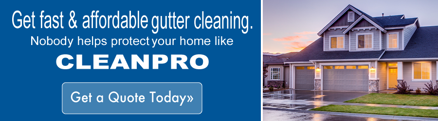 Clean Pro Gutter Cleaning A Professional Gutter Cleaning Company